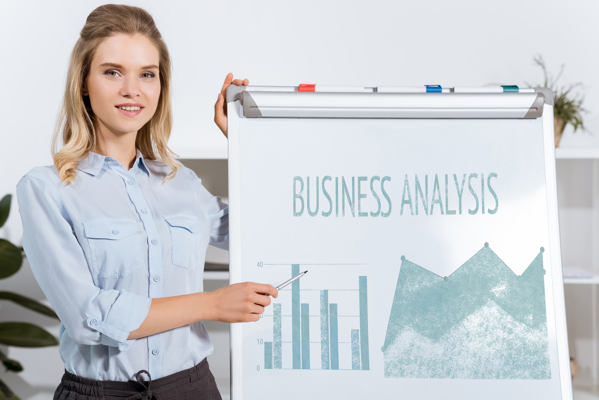 BCS FCBA - Foundation Certificate in Business Analysis